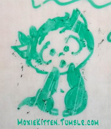 Cute little kitten drawn in green dry-erase marker