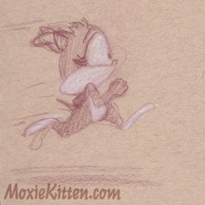 Grey kitten with white socks runs on a toned paper background